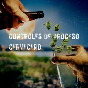 Controles de procesos