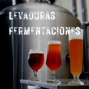 Levaduras y fermentación